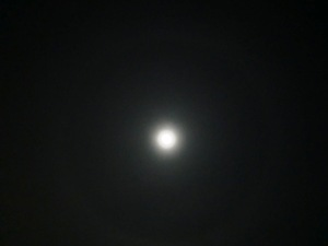 20112_104